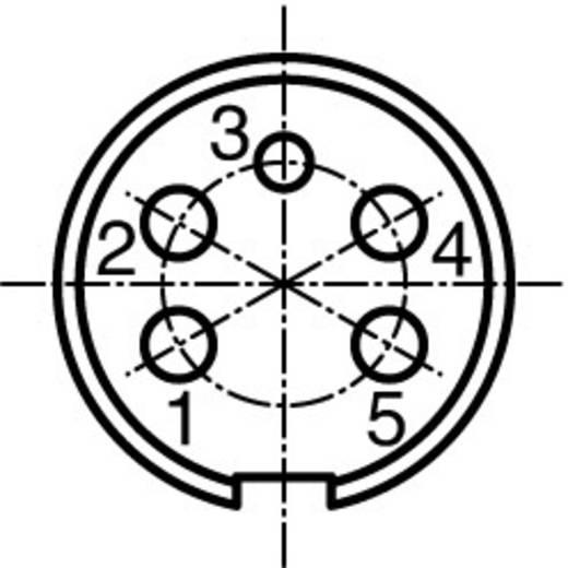 Ronde stekkerconnector C091/D Aantal polen: 5 Kabeldoos 5 A C091 31D005 100 2 Amphenol 1 stuks