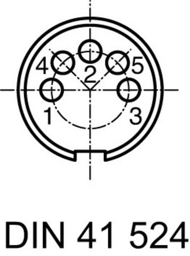 Ronde stekkerconnector C091/D Aantal polen: 5 DIN Kabeldoos 5 A C091 31D105 100 2 Amphenol 1 stuks