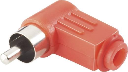 Conrad Components Cinch-connector Stekker, haaks Aantal polen: 2 Rood 4 stuks