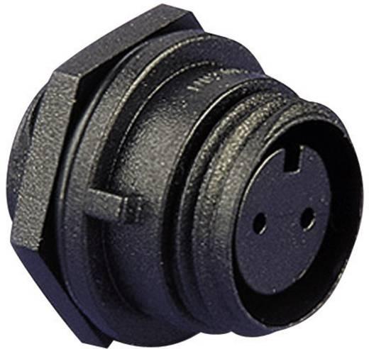 Kabelconnector, montage in frontplaat Aantal polen: 3 Stekker 8 A PX0412/03S Bulgin 1 stuks