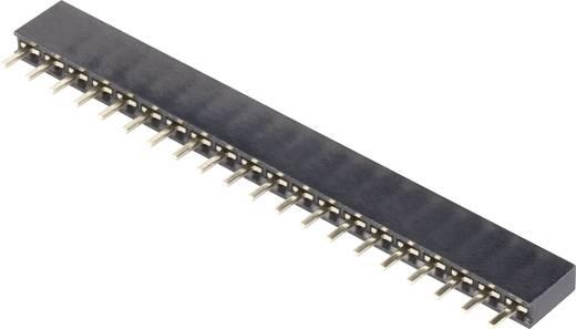Female connector (standaard) Aantal rijen: 1 Aantal polen per rij: 20 BKL Electronic 10120800 1 stuks