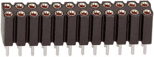 Female connector (precisie) Aantal rijen: 2 Aantal polen per rij: 10 BKL Electronic 10120844 1 stuks