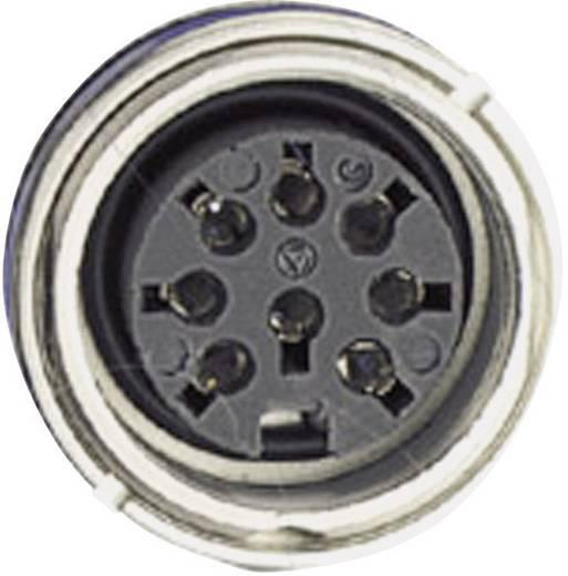 Ronde stekkerconnector C091/D Apparaatdoos Amphenol C091 31N107 1002 IP65/67 Aantal polen: 7 DIN