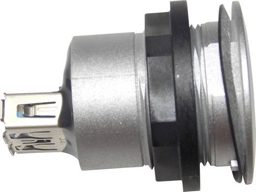 Schlegel RRJ_USB3_AA USB-inbouwbus 3.0 Voor: USB-bus type A · Achter: USB-bus type A Bus, inbouw 1 stuks