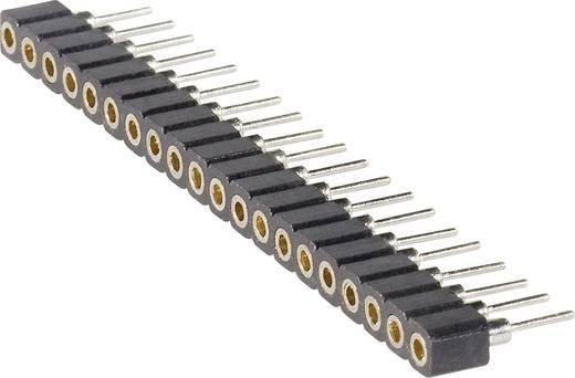 Female connector (precisie) Aantal rijen: 1 Aantal polen per rij: 20 BKL Electronic 10120700 1 stuks