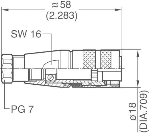 Ronde stekkerconnector C091/D Aantal polen: 7 Kabeldoos 5 A C091 31D007 100 2 Amphenol 1 stuks