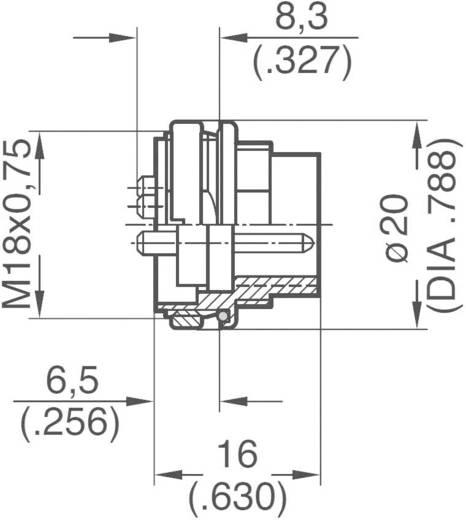 Ronde stekkerconnector Aantal polen: 8 DIN Aparaatstekker 5 A C091 31W008 100 2 Amphenol 1 stuks