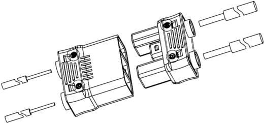 Zwakstroomverbinder Flexibel: - Massief: 0.824-3.307 mm² Aantal polen: 2 1 stuks Oranje