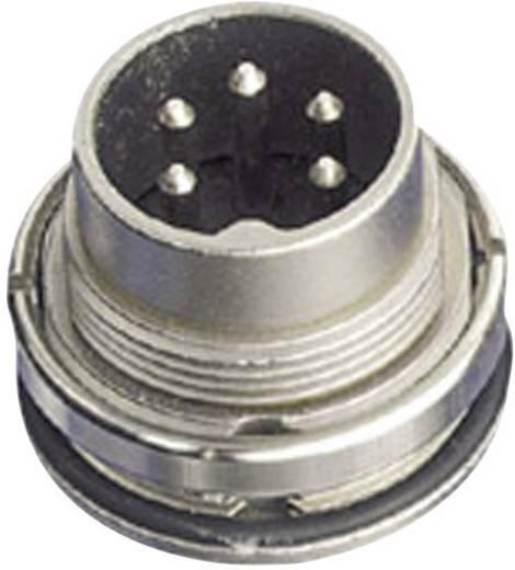 Ronde stekkerconnector Aantal polen: 4 DIN Aparaatstekker 5 A C091 31W004 100 2 Amphenol 1 stuks