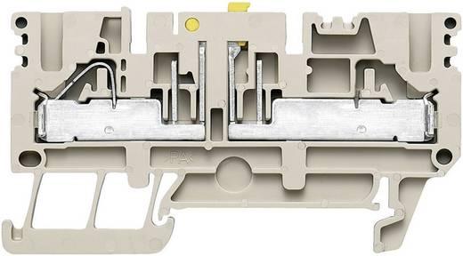 Weidmüller PTR 2.5/4 Scheidingsaansluitblokken - PTR Beige 1 stuks