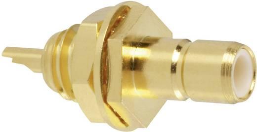 Amphenol SMB1351B1-3GT30G-50 SMB-connector Stekker, inbouw verticaal 50 Ω 1 stuks