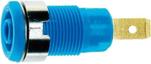 MultiContact SLB 4-F6,3 Veiligheids-labconnector, female Bus, inbouw verticaal Stift-Ø: 4 mm Blauw 1 stuks