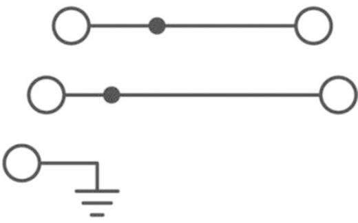 Phoenix Contact STI 2,5-PE/L/L Drielaags installatieklem Grijs Inhoud: 1 stuks