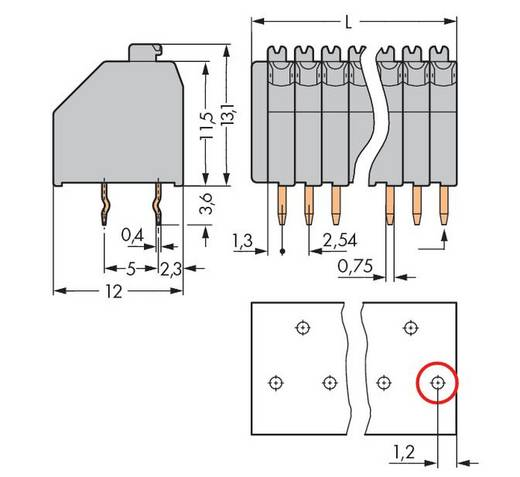 Veerkachtklemblok 0.50 mm² Aantal polen 17 250-1417 WAGO Grijs 100 stuks