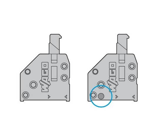 Veerkachtklemblok 0.50 mm² Aantal polen 21 WAGO Grijs 80 stuks