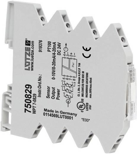 Lütze WPT 7-0829 750829 PT100-temperatuurconverter 1 stuks