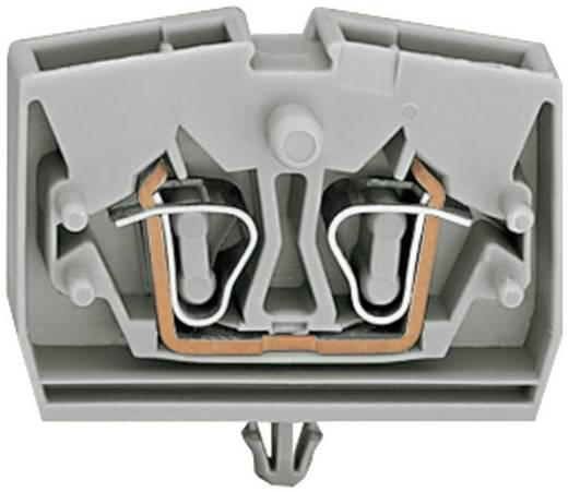 Aderklem 6 mm Veerklem Toewijzing: L Grijs WAGO 264-311 1 stuks