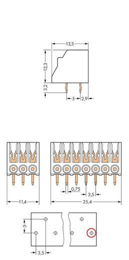 Veerkachtklemblok Aantal polen 10 WAGO Wit 120 stuks