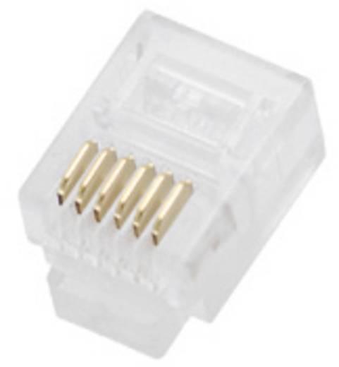 Modulaire stekker voor rondkabel Stekker, recht Aantal polen: 6P6C 940SP3066R Glas (helder) BEL Stewart Connectors 940SP3066R 1 stuks