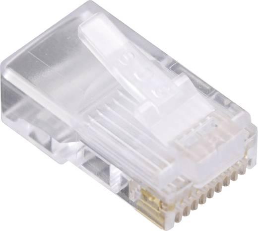 Modulaire stekker voor ronde kabel Stekker, recht Aantal polen: 10P10C 1400-1000-06 Glas (helder) BEL Stewart Connector