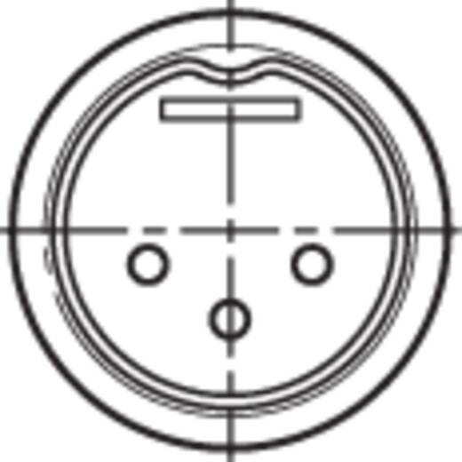 DIN-connector Stekker, recht Rean NYS321G Aantal polen: 3