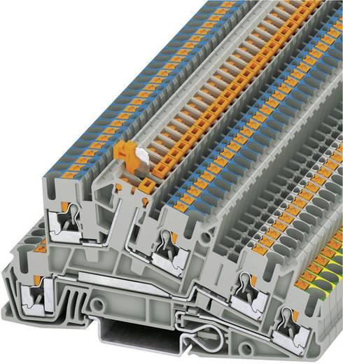 Phoenix Contact PTI 2,5-PE/L/NTB Push-in drie-etage-installatieklemmen PTI Grijs Inhoud: 1 stuks