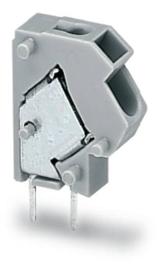 Veerkachtklemblok 1.50 mm² Aantal polen 1 PUSHWIRE MODULAR TERMINAL ANGLE ENTR WAGO Grijs 500 stuks