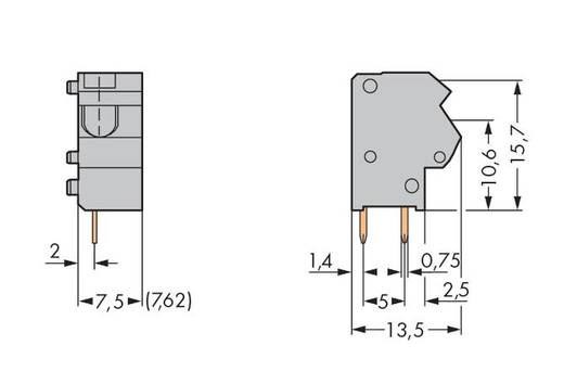 Veerkachtklemblok 1.50 mm² Aantal polen 1 254-551 WAGO Grijs 400 stuks