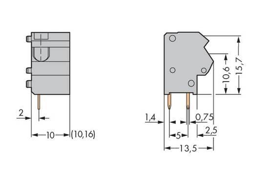 Veerkachtklemblok 1.50 mm² Aantal polen 1 254-862 WAGO Donkergrijs 300 stuks