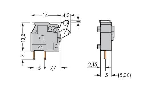 Veerkachtklemblok 2.50 mm² Aantal polen 1 WAGO Grijs 500 stuks