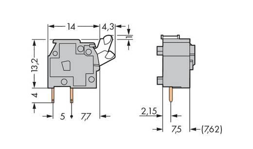 Veerkachtklemblok 2.50 mm² Aantal polen 1 WAGO Grijs 400 stuks