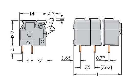 Veerkachtklemblok 2.50 mm² Aantal polen 4 WAGO Grijs 140 stuks