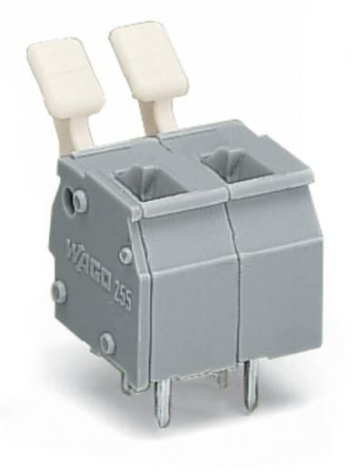 Veerkachtklemblok 2.50 mm² Aantal polen 2 255-502/333-009/999-950 WAGO Lichtgrijs 280 stuks