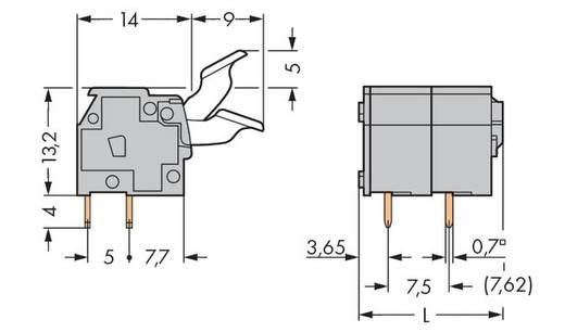 Veerkachtklemblok 2.50 mm² Aantal polen 2 255-502 / 333-009 / 999-950 WAGO Lichtgrijs 280 stuks
