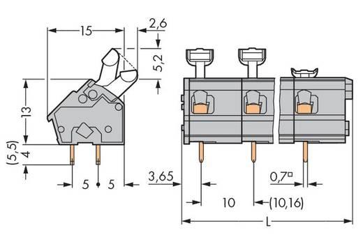 Veerkachtklemblok 2.50 mm² Aantal polen 16 256-616 WAGO Grijs 20 stuks