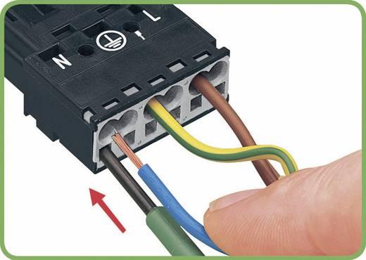 Netstekker Serie (connectoren) WINSTA MINI Bus, recht Totaal aantal polen: 2 + PE 16 A Zwart WAGO 1 stuks