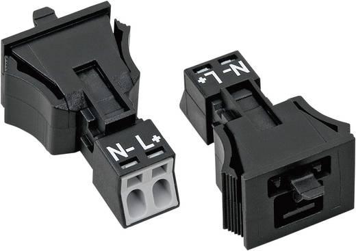 Netstekker Serie (connectoren) WINSTA MINI Stekker, recht Totaal aantal polen: 2 16 A Zwart WAGO 1 stuks
