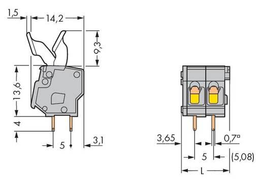 Veerkachtklemblok 2.50 mm² Aantal polen 2 MOD PC STRIP-2 POS W/FINGER BUTTON WAGO Grijs 400 stuks