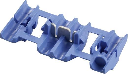 TE Connectivity 735398-0 Zwakstroomverbinder Flexibel: 1-2.5 mm² Massief: 1-2.5 mm² Aantal polen: 2 1 stuks Blauw