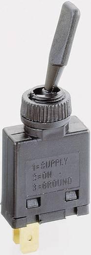 Auto tuimelschakelaar 12 V/DC 10 A 1x uit/aan vergrendelend 1 stuks