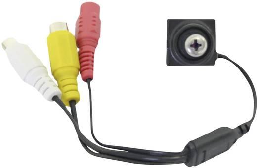 CS 800 Gecamoufleerde bewakingscamera in schroefkop-look 480 TVL 3,7 mm