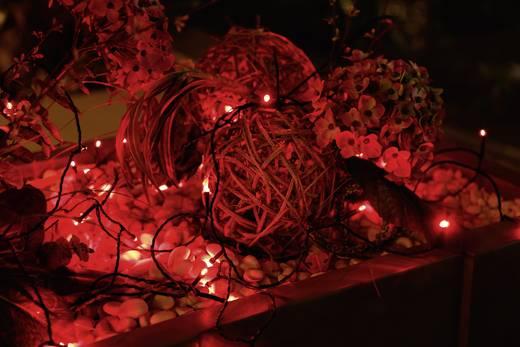 Micro-lichtketting Buiten werkt op het lichtnet