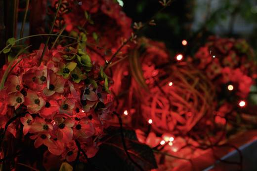 12.64 m LED Micro-lichtketting Rood Buiten Polarlite