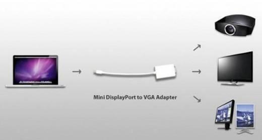 VGA / DisplayPort Adapter [1x Mini-DisplayPort stekker - 1x VGA bus] Wit Manhattan