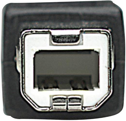 Manhattan USB 2.0 Aansluitkabel [1x USB 2.0 stekker A - 1x USB 2.0 stekker B] 3 m Zwart Vergulde steekcontacten, UL gece