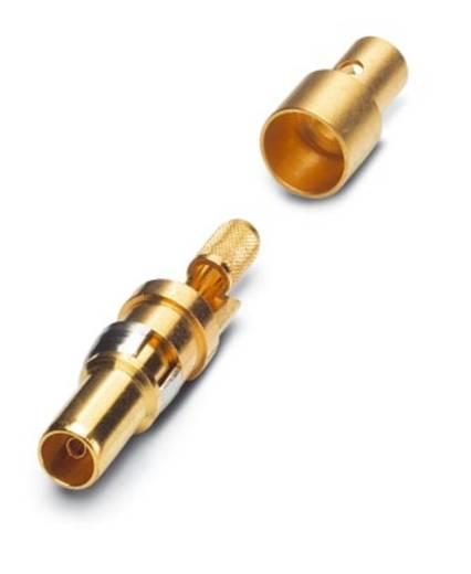 Phoenix Contact VS-ST-KX-75-RG179/187 Coaxiaal pencontact Verguld 10 stuks