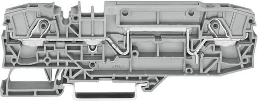 Basisklem 8 mm Veerklem Toewijzing: L Grijs WAGO 2006-8661 1 stuks