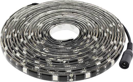 LED-strip complete set Zwartlicht met stekker 12 V 500 cm Müller Licht LED-strip blacklight 57017