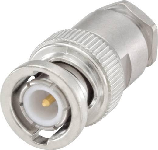 Rosenberger 51S106-002N5 BNC-connector Stekker, recht 50 Ω 1 stuks