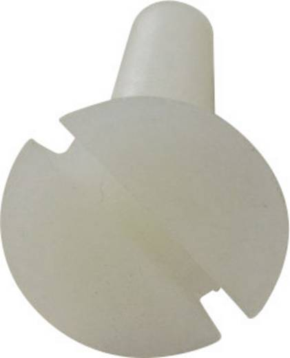 TOOLCRAFT Verzonken schroeven M4 20 mm Sleuf DIN 963 Kunststof, Polyamide 10 stuks
